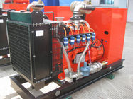 37.5kVA 30kw Biogas Natural Gas Generators Set with Water Cooling Noise Attenuation and Ventilation